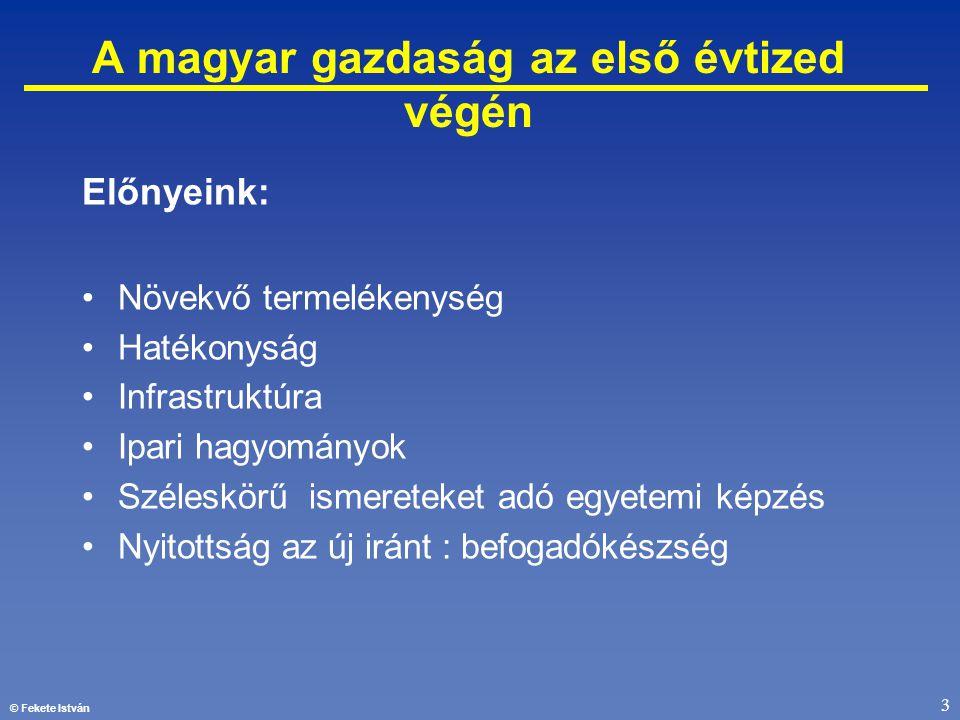 © Fekete István 3 A magyar gazdaság az első évtized végén Előnyeink: •Növekvő termelékenység •Hatékonyság •Infrastruktúra •Ipari hagyományok •Széleskö
