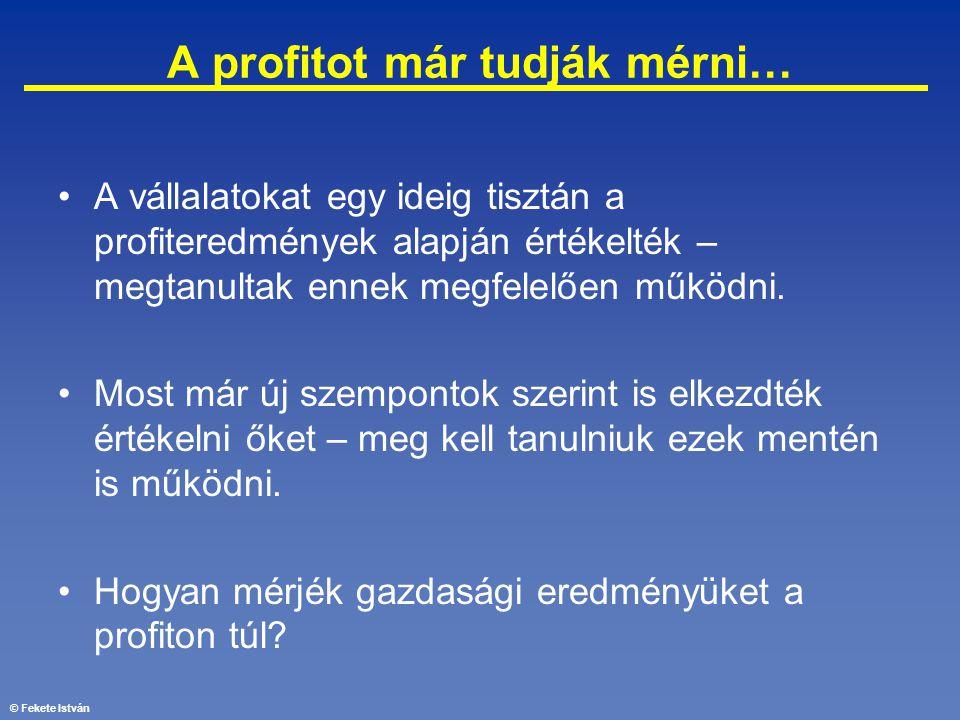 © Fekete István A profitot már tudják mérni… •A vállalatokat egy ideig tisztán a profiteredmények alapján értékelték – megtanultak ennek megfelelően m