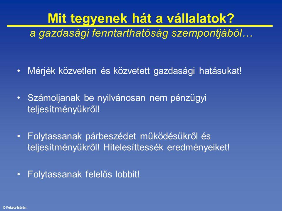 © Fekete István Mit tegyenek hát a vállalatok? a gazdasági fenntarthatóság szempontjából… •Mérjék közvetlen és közvetett gazdasági hatásukat! •Számolj