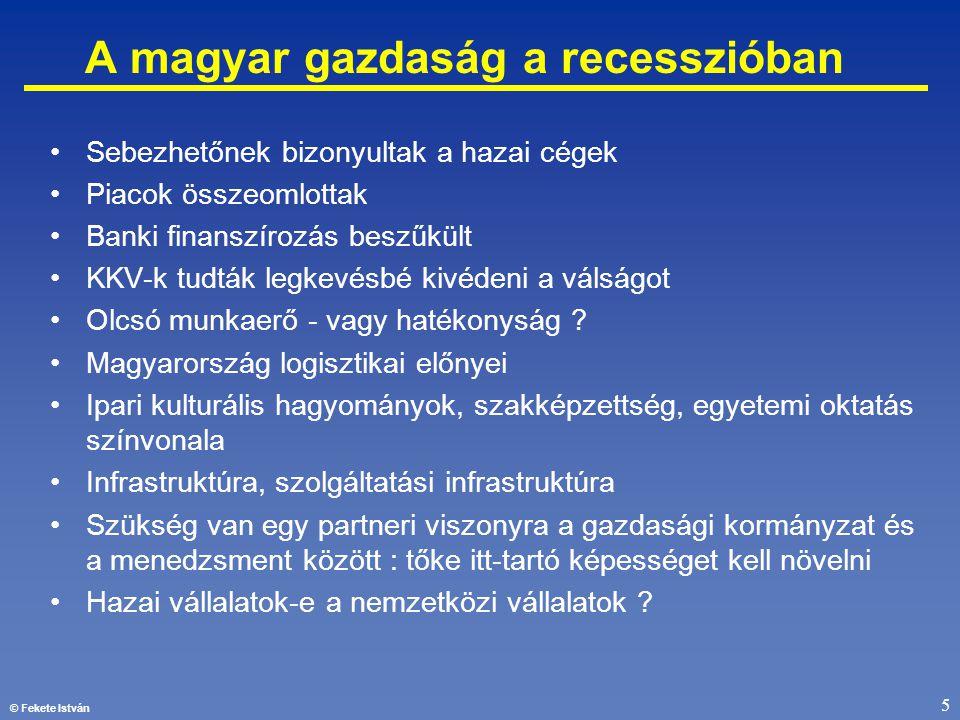 © Fekete István 5 A magyar gazdaság a recesszióban •Sebezhetőnek bizonyultak a hazai cégek •Piacok összeomlottak •Banki finanszírozás beszűkült •KKV-k