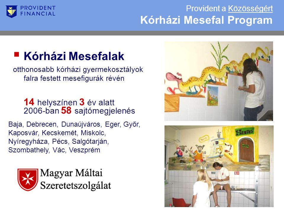 Provident a Közösségért Kórházi Mesefal Program  Kórházi Mesefalak otthonosabb kórházi gyermekosztályok falra festett mesefigurák révén 14 helyszínen 3 év alatt 2006-ban 58 sajtómegjelenés Baja, Debrecen, Dunaújváros, Eger, Győr, Kaposvár, Kecskemét, Miskolc, Nyíregyháza, Pécs, Salgótarján, Szombathely, Vác, Veszprém