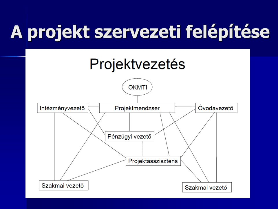 A projekt szervezeti felépítése