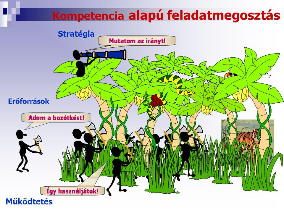 Kompetencia alapú feladatmegosztás Stratégia Erőforrások Működtetés