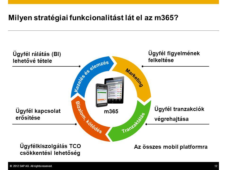 ©2012 SAP AG.All rights reserved.12 Milyen stratégiai funkcionalitást lát el az m365.