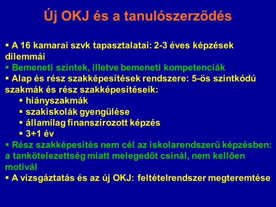 Új OKJ és a tanulószerződés  A 16 kamarai szvk tapasztalatai: 2-3 éves képzések dilemmái  Bemeneti szintek, illetve bemeneti kompetenciák  Alap és