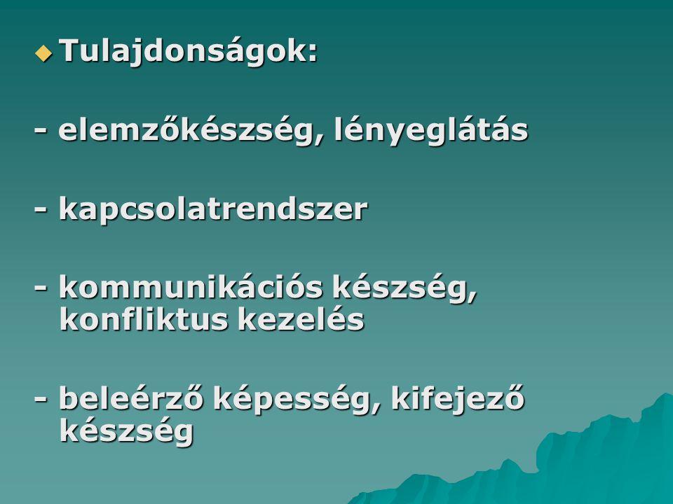  Tulajdonságok: - elemzőkészség, lényeglátás - kapcsolatrendszer - kommunikációs készség, konfliktus kezelés - beleérző képesség, kifejező készség