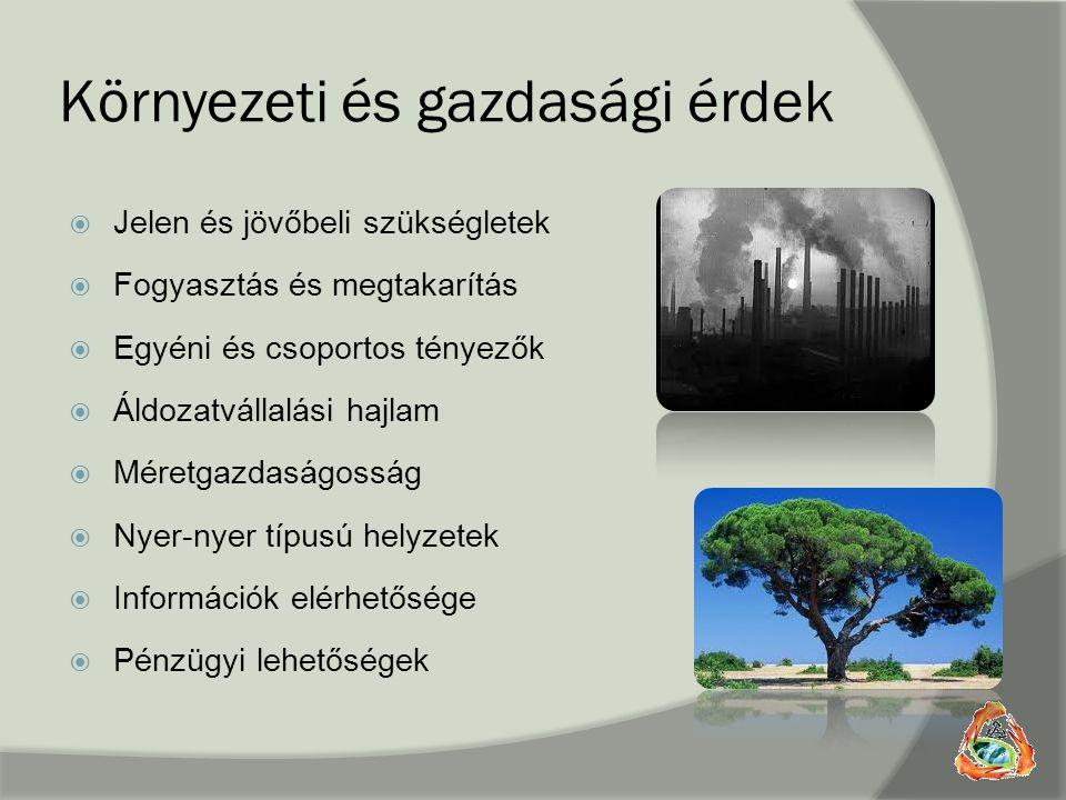 Környezeti és gazdasági érdek  Jelen és jövőbeli szükségletek  Fogyasztás és megtakarítás  Egyéni és csoportos tényezők  Áldozatvállalási hajlam 