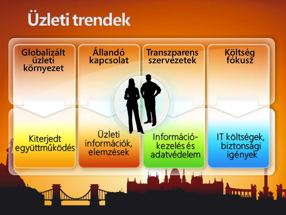 Információ- kezelés és adatvédelem Üzleti információk, elemzések Kiterjedt együttműködés IT költségek, biztonsági igények Állandó kapcsolat Transzpare