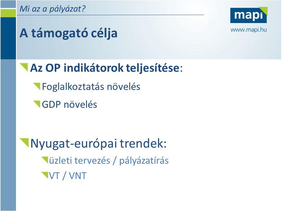 A támogató célja Mi az a pályázat? Az OP indikátorok teljesítése: Foglalkoztatás növelés GDP növelés Nyugat-európai trendek: üzleti tervezés / pályáza