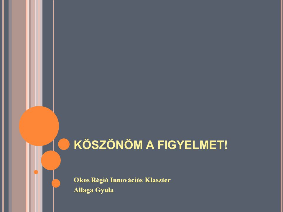 KÖSZÖNÖM A FIGYELMET! Okos Régió Innovációs Klaszter Allaga Gyula
