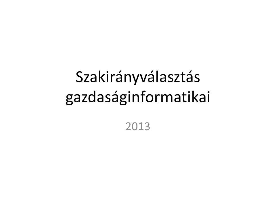 Szakirányválasztás gazdaságinformatikai 2013
