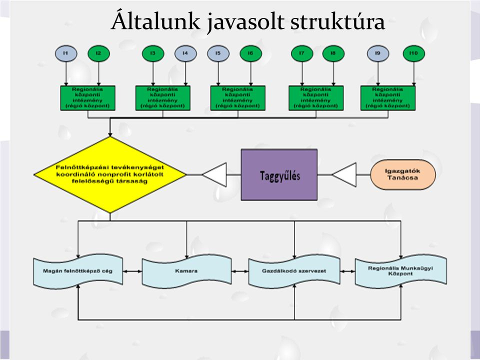Általunk javasolt struktúra
