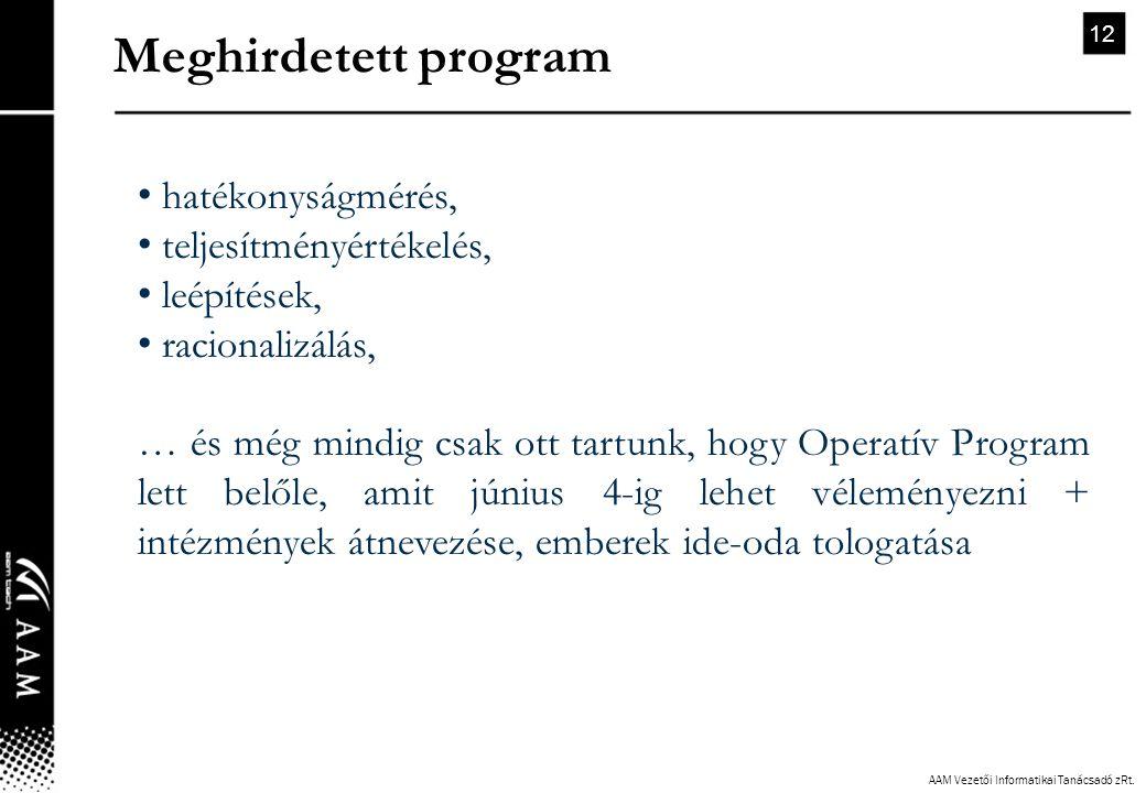 AAM Vezetői Informatikai Tanácsadó zRt. 12 • hatékonyságmérés, • teljesítményértékelés, • leépítések, • racionalizálás, … és még mindig csak ott tartu