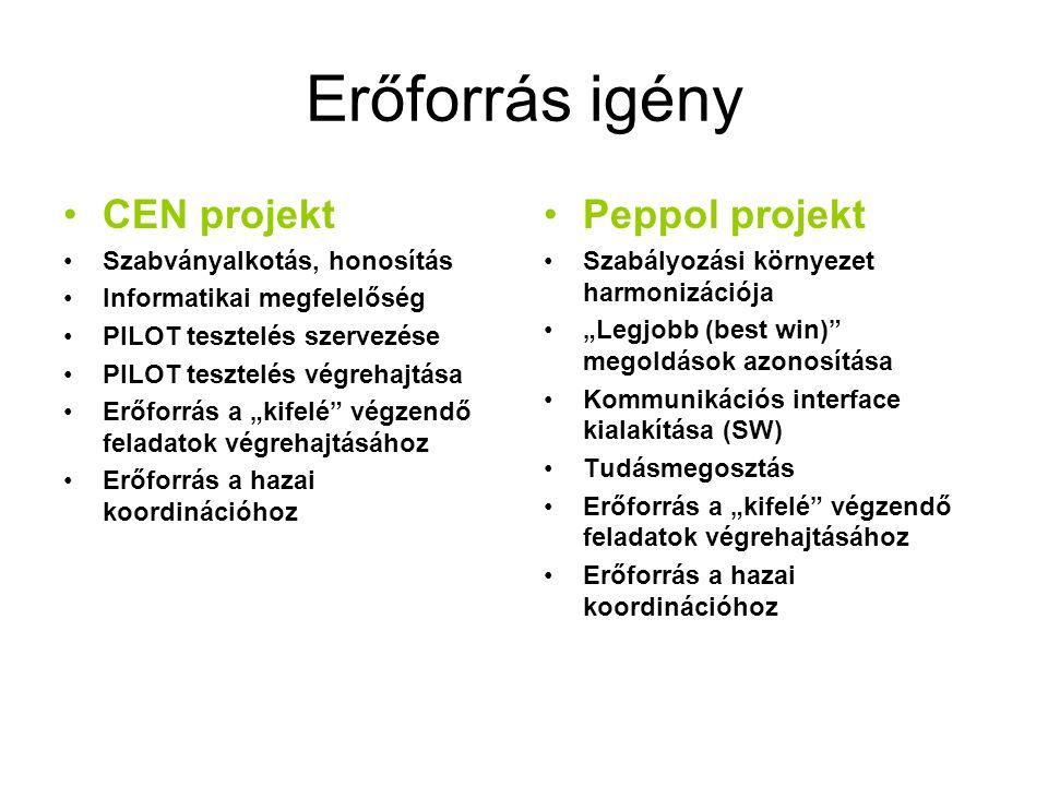 """Erőforrás igény •CEN projekt •Szabványalkotás, honosítás •Informatikai megfelelőség •PILOT tesztelés szervezése •PILOT tesztelés végrehajtása •Erőforrás a """"kifelé végzendő feladatok végrehajtásához •Erőforrás a hazai koordinációhoz •Peppol projekt •Szabályozási környezet harmonizációja •""""Legjobb (best win) megoldások azonosítása •Kommunikációs interface kialakítása (SW) •Tudásmegosztás •Erőforrás a """"kifelé végzendő feladatok végrehajtásához •Erőforrás a hazai koordinációhoz"""