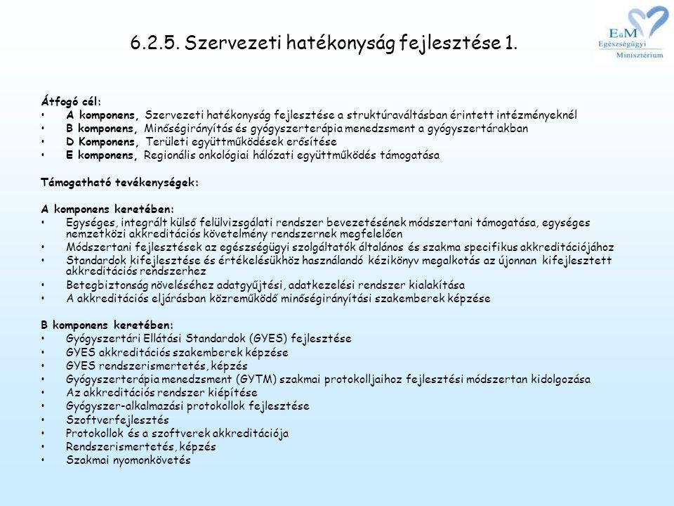 6.2.5.Szervezeti hatékonyság fejlesztése 1.