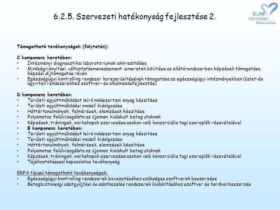 6.2.5.Szervezeti hatékonyság fejlesztése 2.