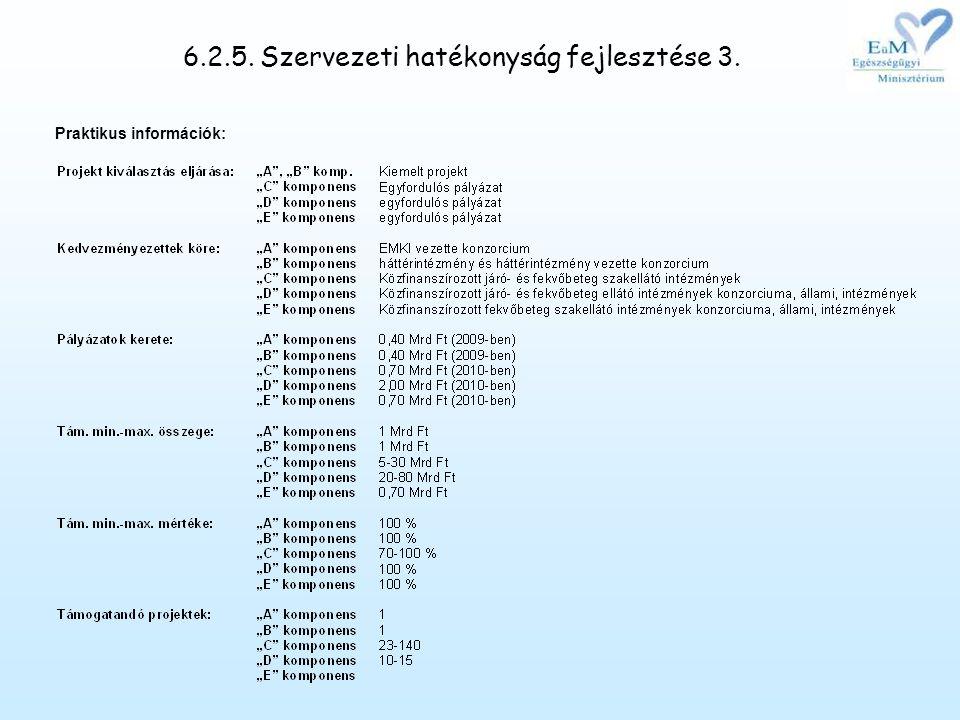 6.2.5. Szervezeti hatékonyság fejlesztése 3. Praktikus információk: