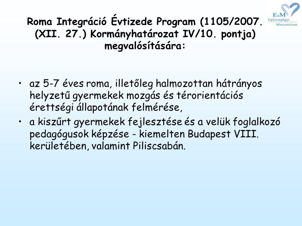 Roma Integráció Évtizede Program (1105/2007.(XII.