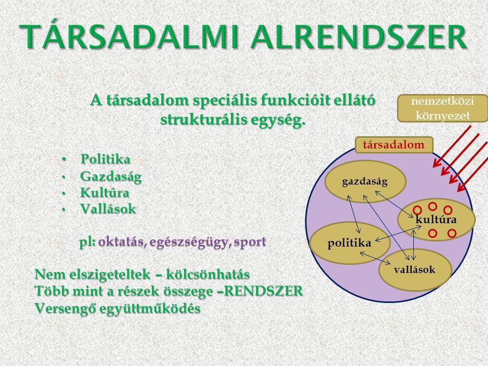 A társadalom speciális funkcióit ellátó strukturális egység. • Politika • Gazdaság • Kultúra • Vallások pl: oktatás, egészségügy, sport pl: oktatás, e