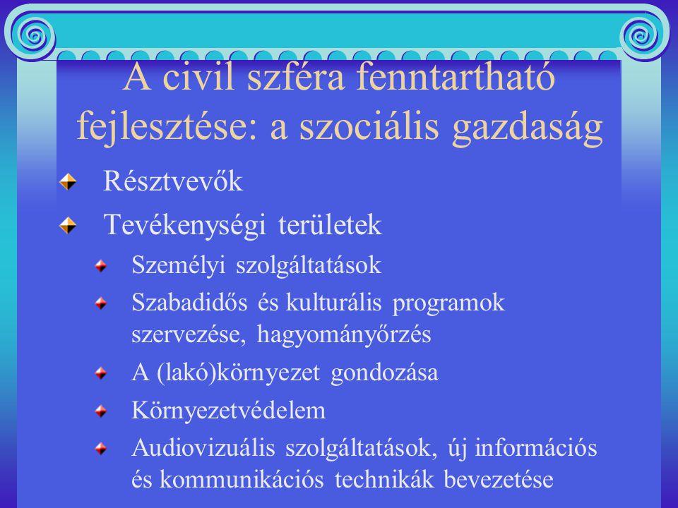 A civil szféra fenntartható fejlesztése: a szociális gazdaság Résztvevők Tevékenységi területek Személyi szolgáltatások Szabadidős és kulturális programok szervezése, hagyományőrzés A (lakó)környezet gondozása Környezetvédelem Audiovizuális szolgáltatások, új információs és kommunikációs technikák bevezetése