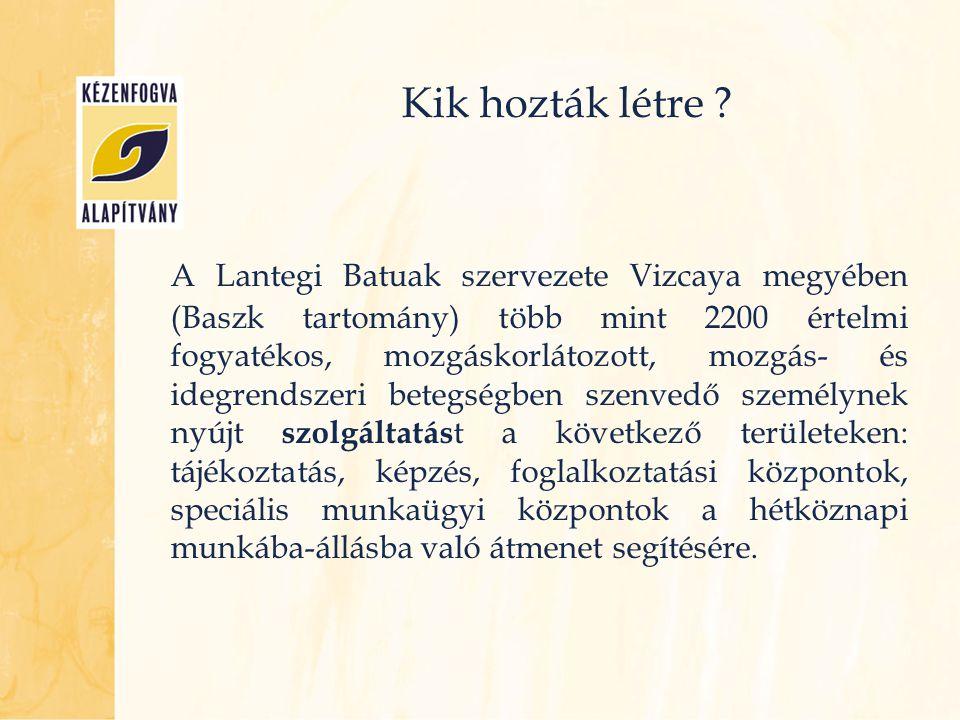 Kik hozták létre ? A Lantegi Batuak szervezete Vizcaya megyében (Baszk tartomány) több mint 2200 értelmi fogyatékos, mozgáskorlátozott, mozgás- és ide
