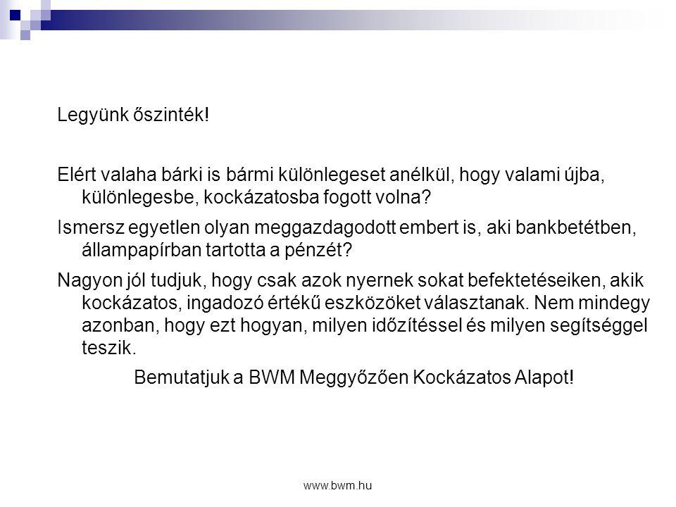 www.bwm.hu Áttekinthetőség  Információk internetes felületen  Havi és éves portfoliójelentések  Napi szintű eredmények közzététele:  www.bwm.hu/alap www.bwm.hu/alap  www.bamosz.hu www.bamosz.hu  www.magyartokepiac.hu www.magyartokepiac.hu