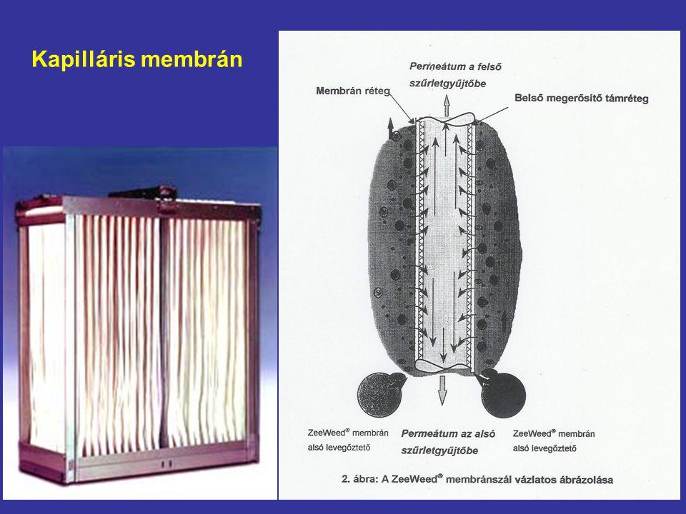 Kapilláris membrán