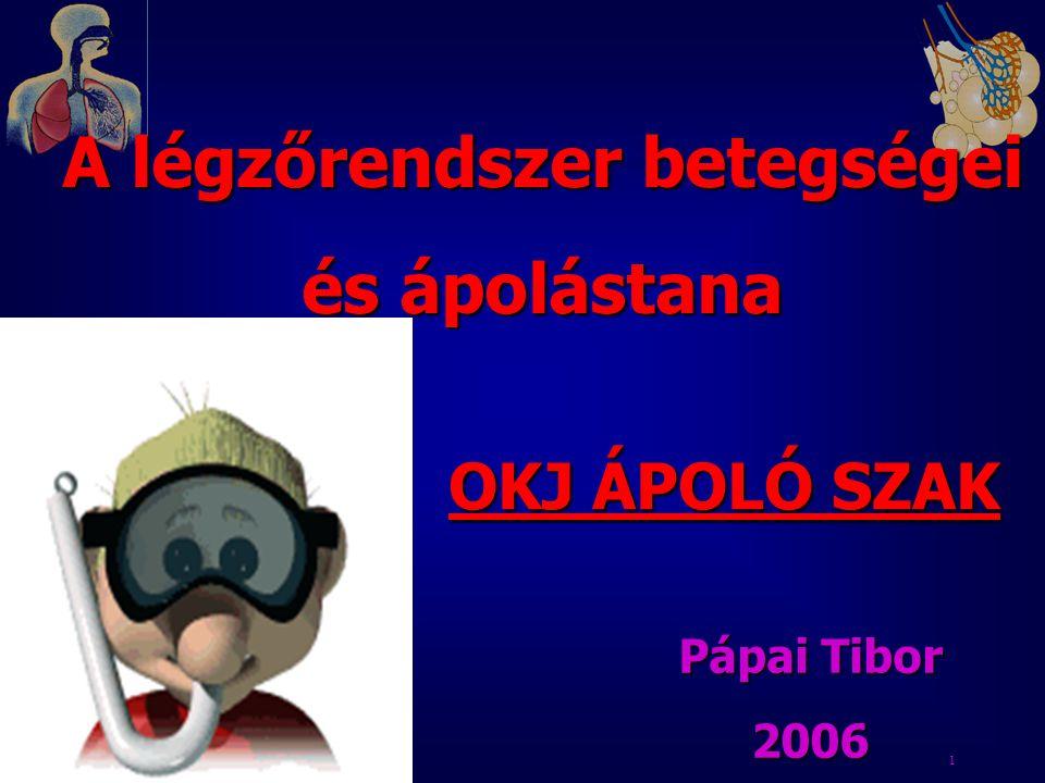 1 A légzőrendszer betegségei és ápolástana OKJ ÁPOLÓ SZAK Pápai Tibor 2006
