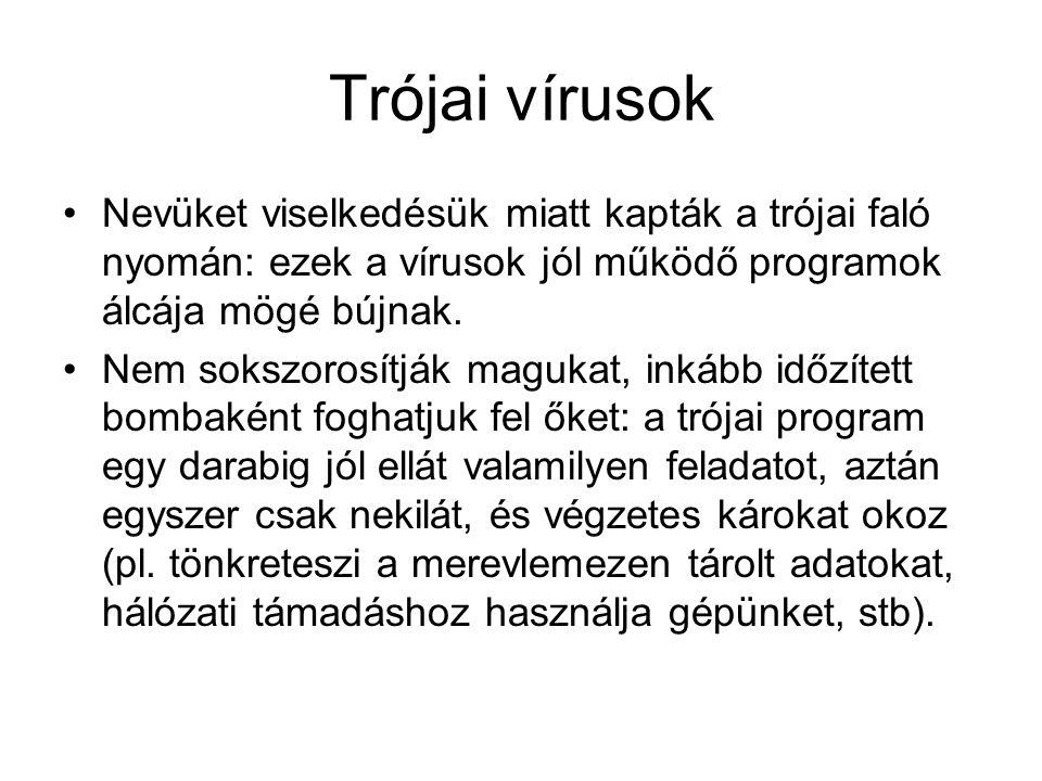 Trójai vírusok •Nevüket viselkedésük miatt kapták a trójai faló nyomán: ezek a vírusok jól működő programok álcája mögé bújnak.