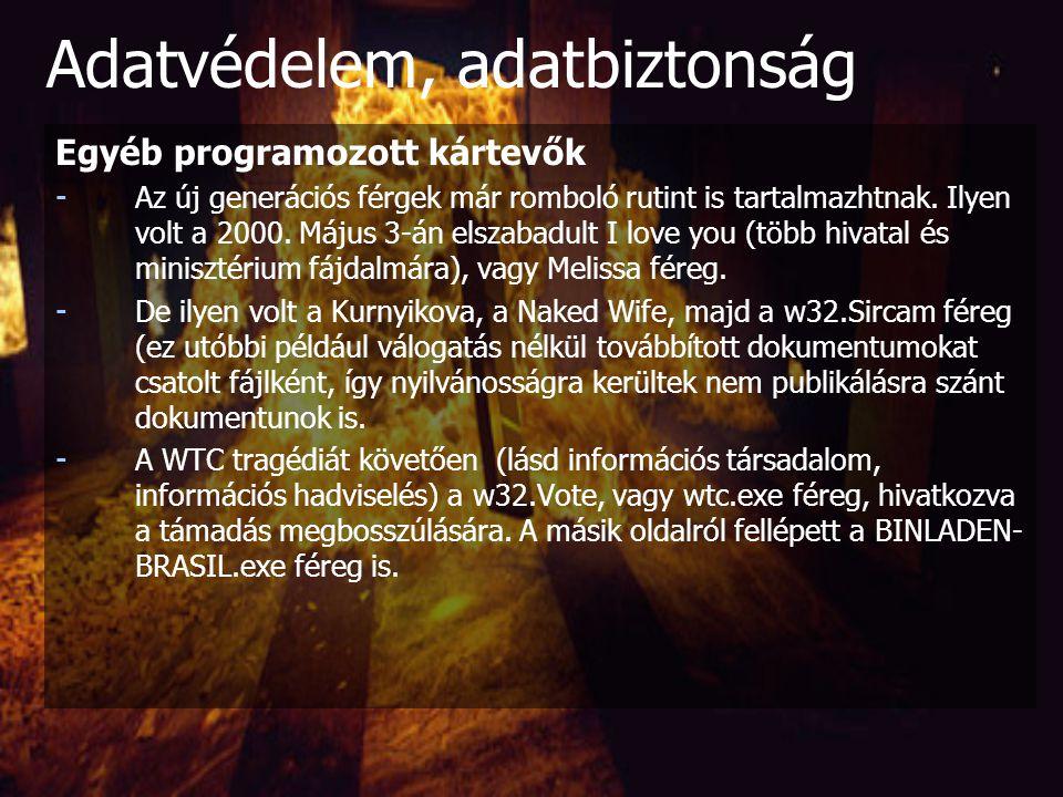 Egyéb programozott kártevők Programférgek (Worms) : - Önmagukban is futóképes, hálózaton keresztül gépről gépre vándorló programok - Több részből is á