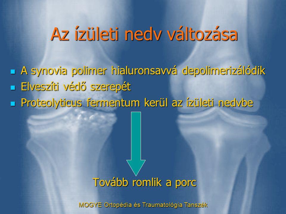 MOGYE Ortopédia és Traumatológia Tanszék Az ízületi nedv változása  A synovia polimer hialuronsavvá depolimerizálódik  Elveszíti védő szerepét  Pro
