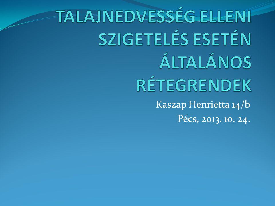 Kaszap Henrietta 14/b Pécs, 2013. 10. 24.