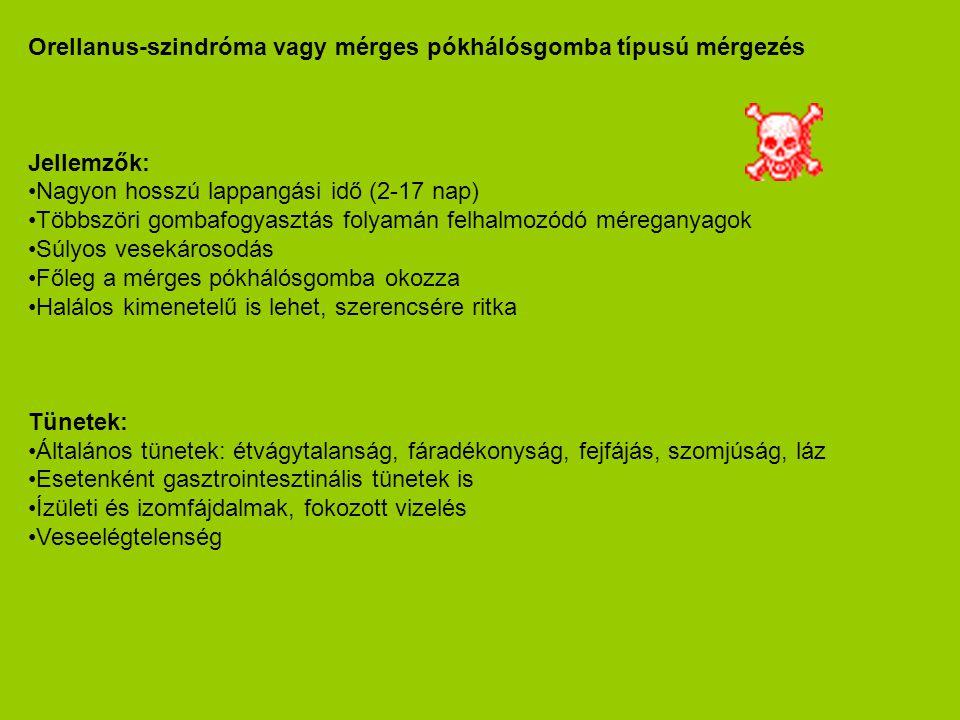 Orellanus-szindróma vagy mérges pókhálósgomba típusú mérgezés Jellemzők: •Nagyon hosszú lappangási idő (2-17 nap) •Többszöri gombafogyasztás folyamán