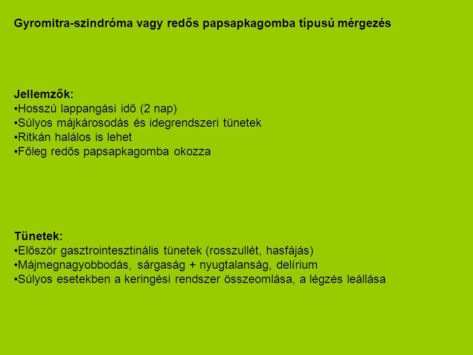 Gyromitra-szindróma vagy redős papsapkagomba típusú mérgezés Jellemzők: •Hosszú lappangási idő (2 nap) •Súlyos májkárosodás és idegrendszeri tünetek •