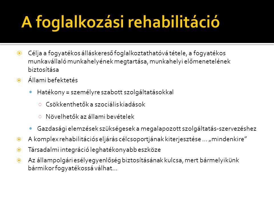  Nem valósult meg a komplex rehabilitációs rendszer kiépítése  Nem valósult meg a foglalkozási rehabilitációs rendszer minőségi fejlesztése  Bevezetésre került egy új ellátási forma: a rehabilitációs járadék  Kiépült egy új szakhatósági eljárás a RJ-s ügyfelek ellátására  A következmények (3 év múlva) beláthatatlanok