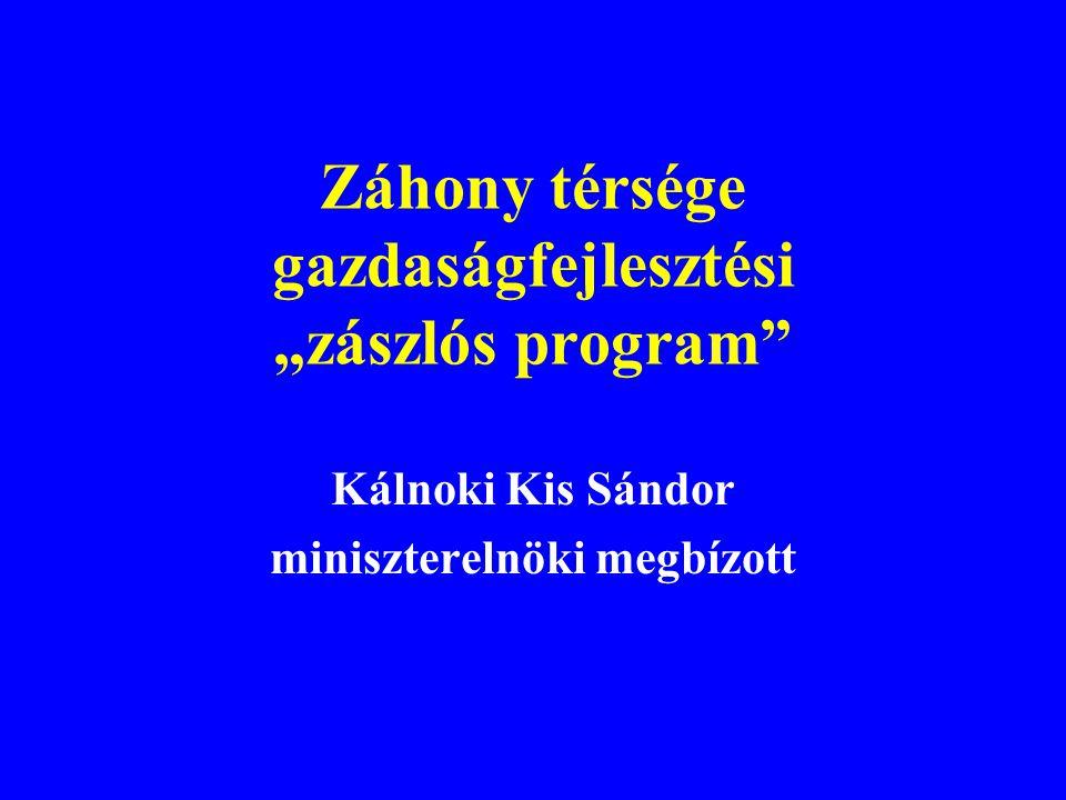 """Záhony térsége gazdaságfejlesztési """"zászlós program Kálnoki Kis Sándor miniszterelnöki megbízott"""