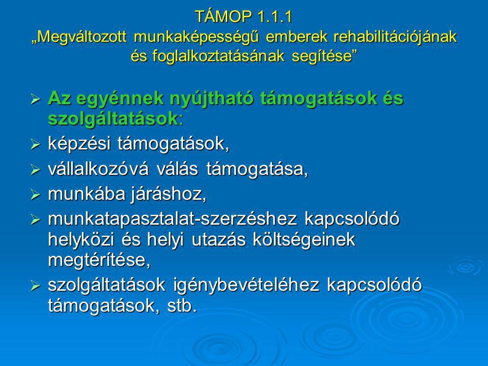 """TÁMOP 1.1.1 """"Megváltozott munkaképességű emberek rehabilitációjának és foglalkoztatásának segítése""""  Az egyénnek nyújtható támogatások és szolgáltatá"""