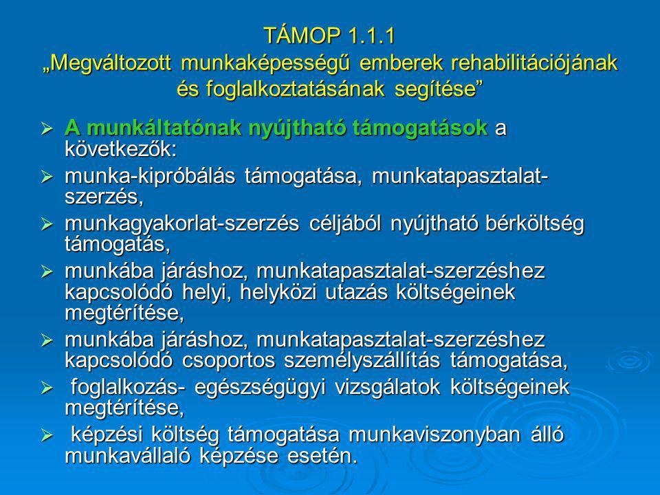 """TÁMOP 1.1.1 """"Megváltozott munkaképességű emberek rehabilitációjának és foglalkoztatásának segítése""""  A munkáltatónak nyújtható támogatások a következ"""