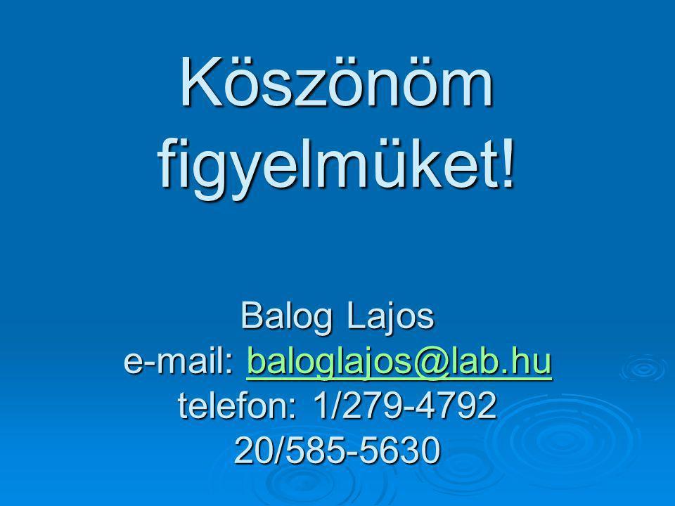 Köszönöm figyelmüket! Balog Lajos e-mail: baloglajos@lab.hu telefon: 1/279-4792 20/585-5630 baloglajos@lab.hu