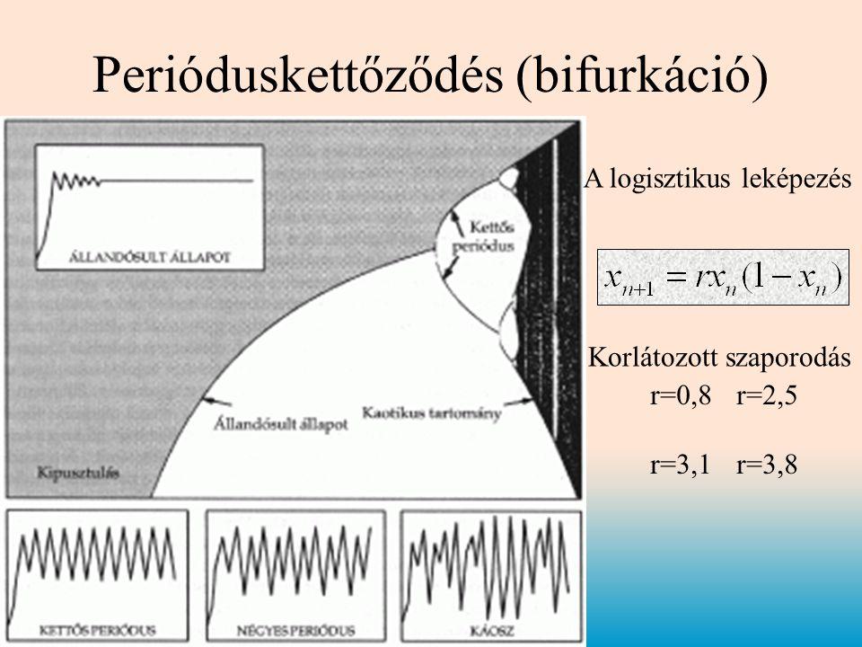 Perióduskettőződés (bifurkáció) A logisztikus leképezés r=0,8r=2,5 r=3,1r=3,8 Korlátozott szaporodás