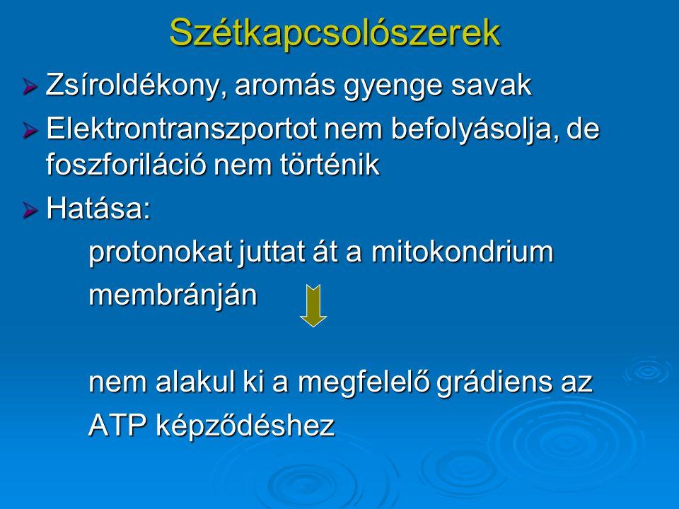Szétkapcsolószerek  Zsíroldékony, aromás gyenge savak  Elektrontranszportot nem befolyásolja, de foszforiláció nem történik  Hatása: protonokat juttat át a mitokondrium membránján nem alakul ki a megfelelő grádiens az ATP képződéshez