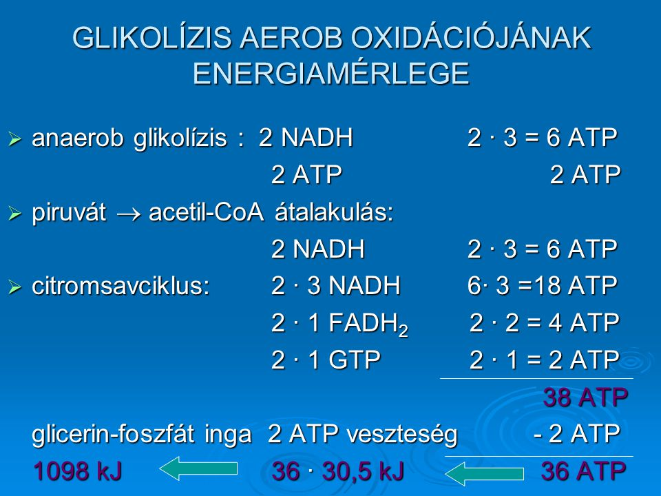 GLIKOLÍZIS AEROB OXIDÁCIÓJÁNAK ENERGIAMÉRLEGE  anaerob glikolízis : 2 NADH 2 · 3 = 6 ATP 2 ATP 2 ATP  piruvát  acetil-CoA átalakulás: 2 NADH 2 · 3 = 6 ATP  citromsavciklus:2 · 3 NADH 6· 3 =18 ATP 2 · 1 FADH 2 2 · 2 = 4 ATP 2 · 1 GTP2 · 1 = 2 ATP 38 ATP 38 ATP glicerin-foszfát inga 2 ATP veszteség - 2 ATP 1098 kJ36 · 30,5 kJ 36 ATP