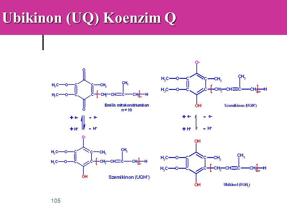 105 Ubikinon (UQ) Koenzim Q