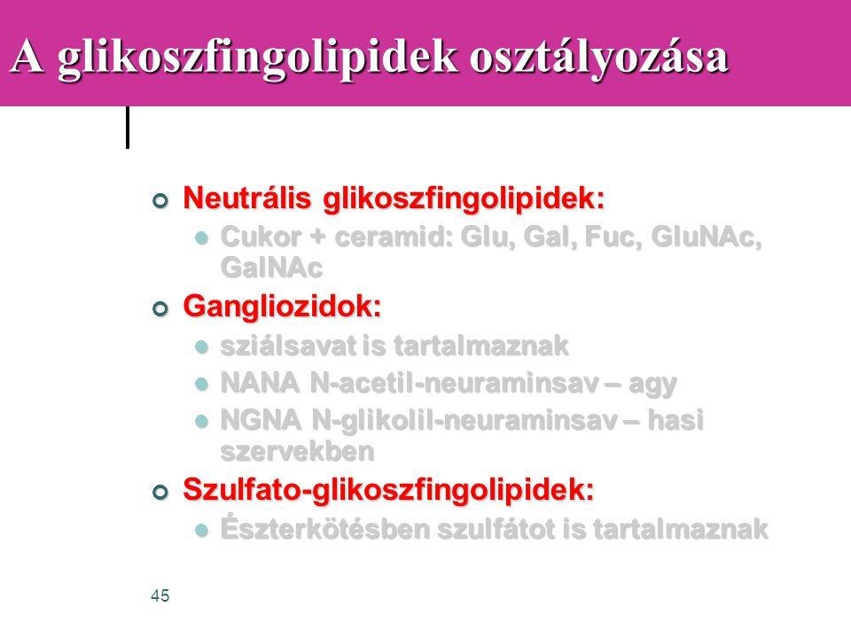 45 A glikoszfingolipidek osztályozása Neutrális glikoszfingolipidek:  Cukor + ceramid: Glu, Gal, Fuc, GluNAc, GalNAc Gangliozidok:  sziálsavat is ta