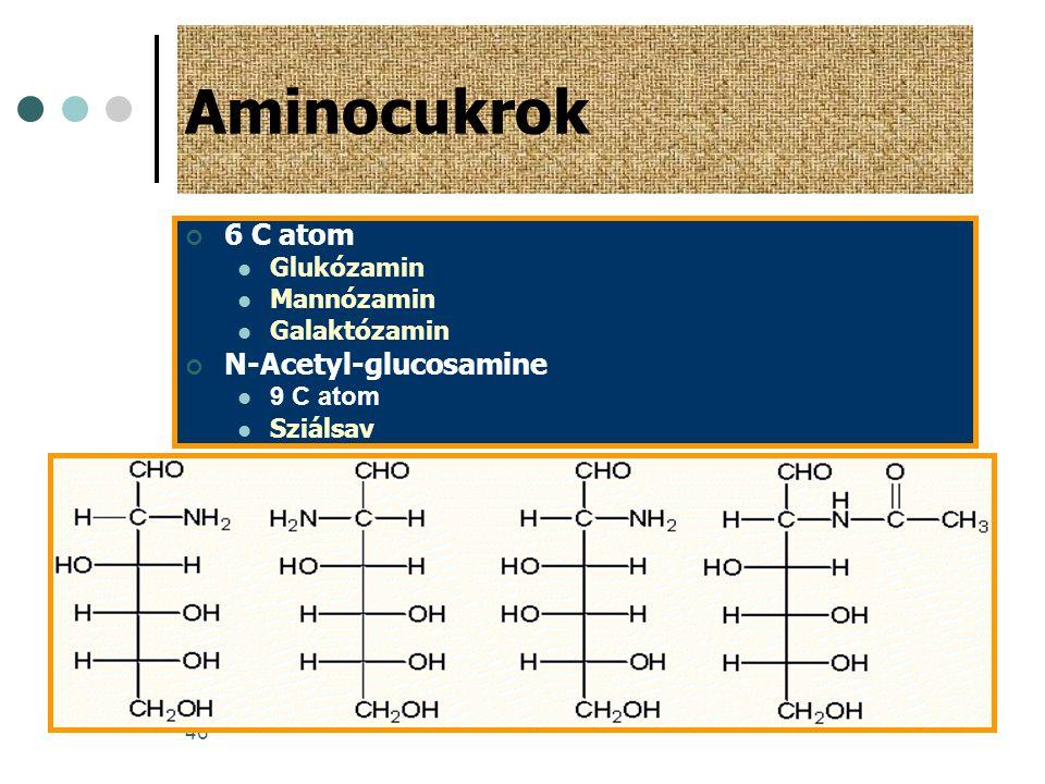 46 Aminocukrok 6 C atom  Glukózamin  Mannózamin  Galaktózamin N-Acetyl-glucosamine  9 C atom  Sziálsav