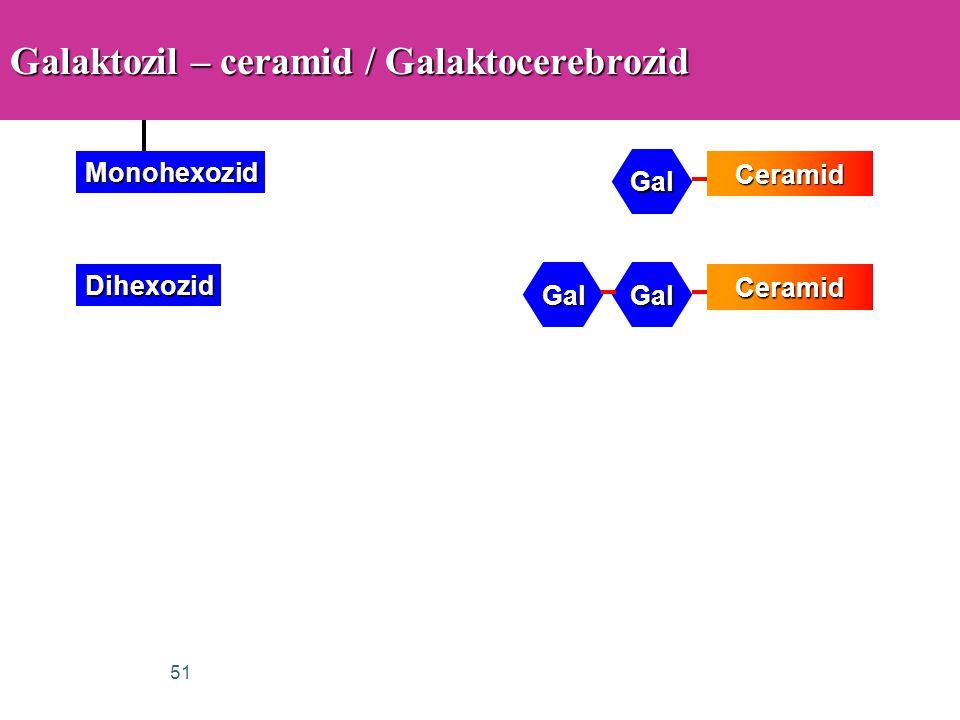 51 Galaktozil – ceramid / Galaktocerebrozid Ceramid Gal Monohexozid GalGal DihexozidCeramid