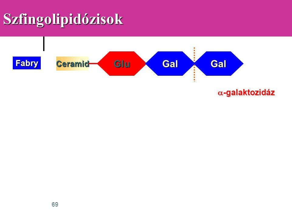 69SzfingolipidózisokCeramidFabry GluGalGal  -galaktozidáz