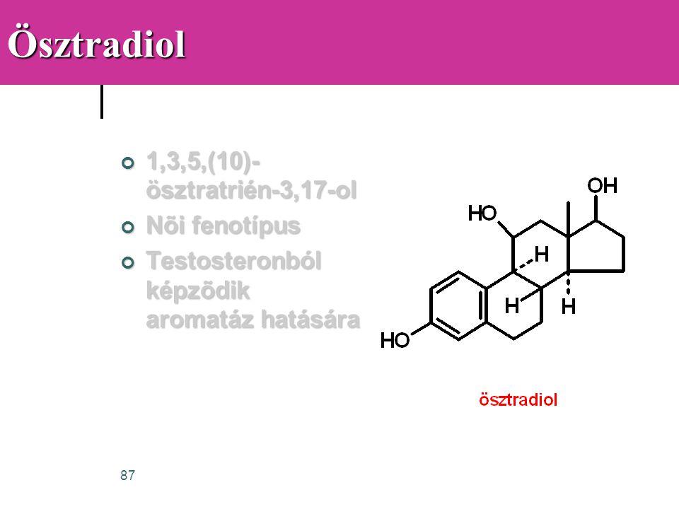 87Ösztradiol 1,3,5,(10)- ösztratrién-3,17-ol Nõi fenotípus Testosteronból képzõdik aromatáz hatására