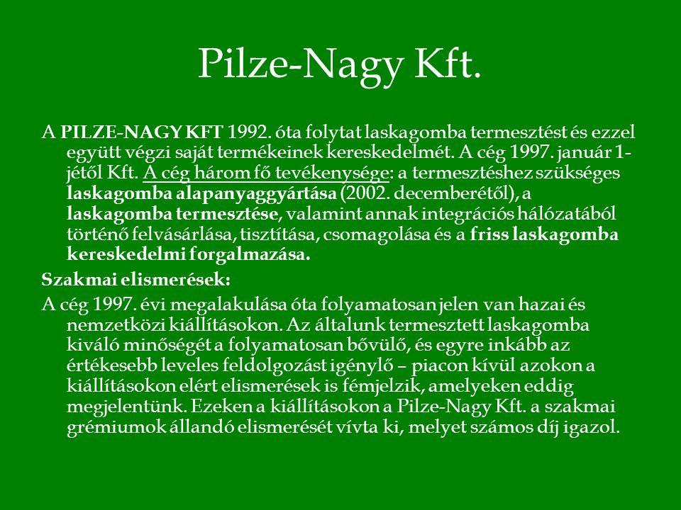 Pilze-Nagy Kft. A PILZE-NAGY KFT 1992.