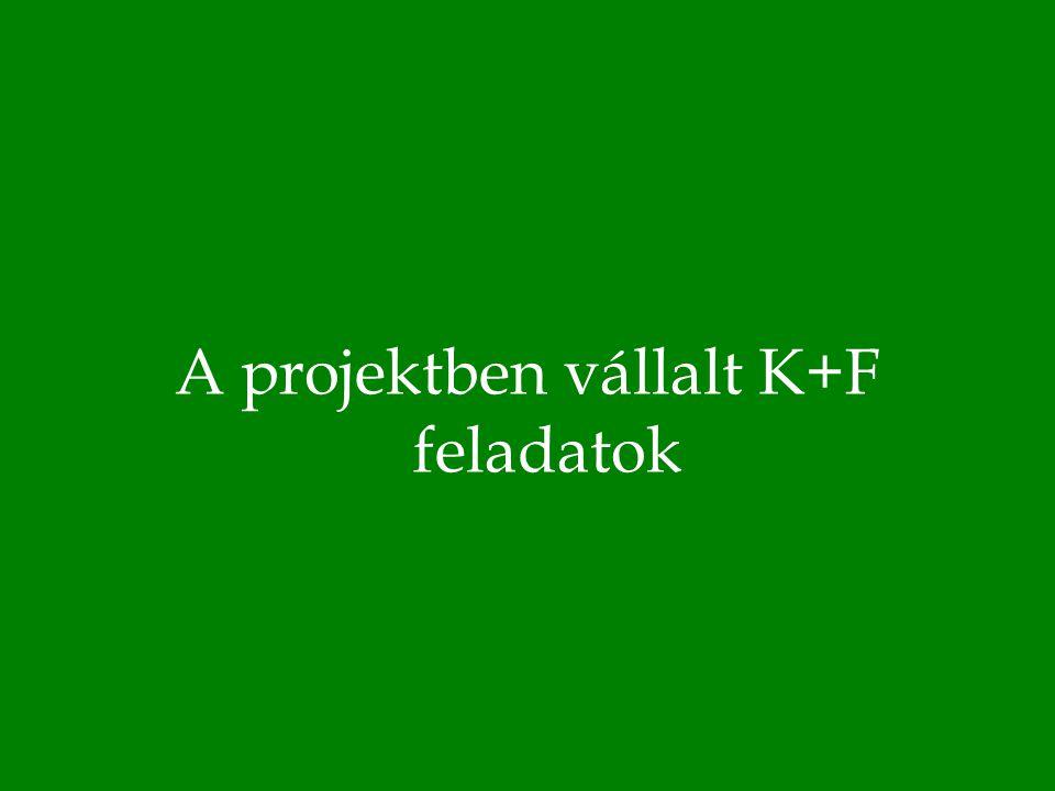A projektben vállalt K+F feladatok